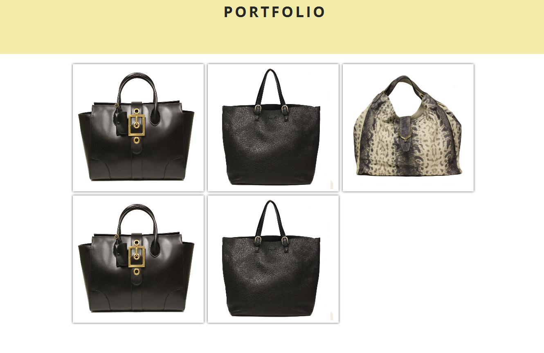 Front view of the portfolio.