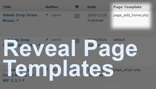 reveal-page-templates screenshot 1