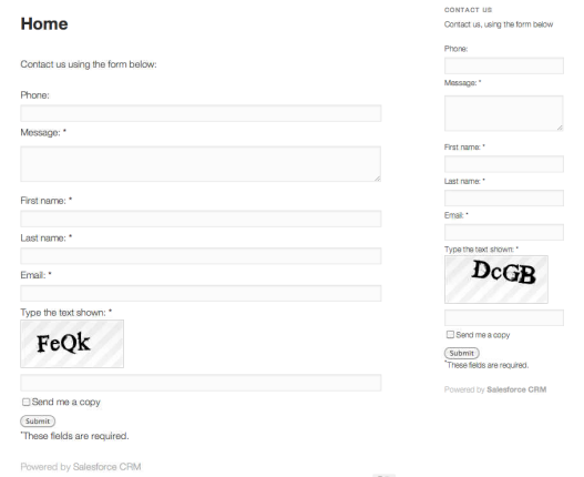 An example form generated with Brilliant Web-to-Lead for Salesforce (with optional CAPTCHA) -- both post and widget forms are shown in the TwentyEleven theme