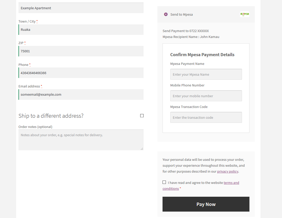 Checkout Send Payment to Mpesa frontend -  details and form.