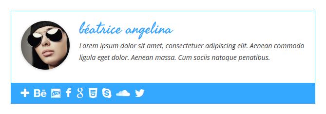 ... Simple Author Box - White icons - blue background ...