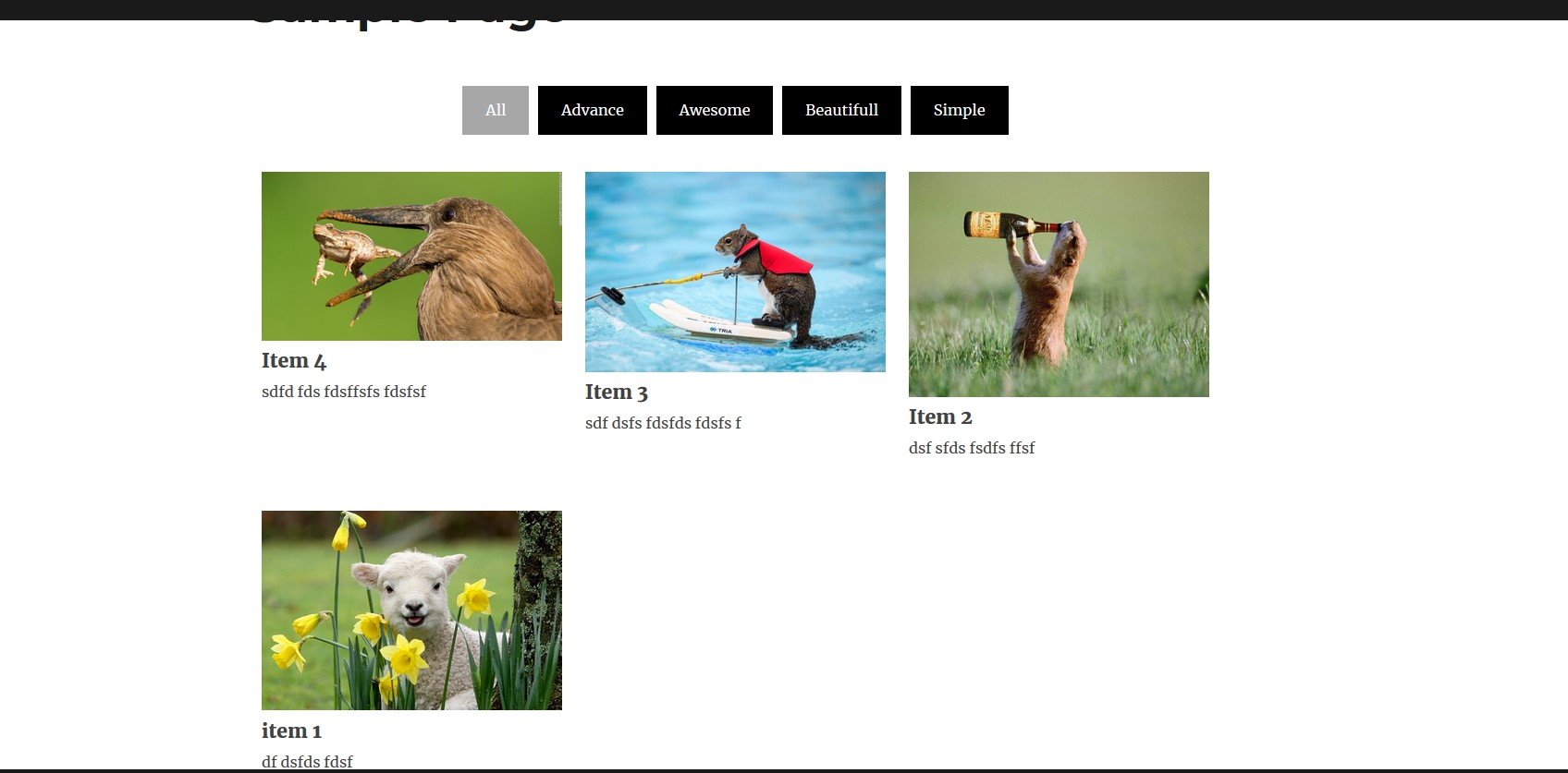 Simple Gallery with filter frontend view.
