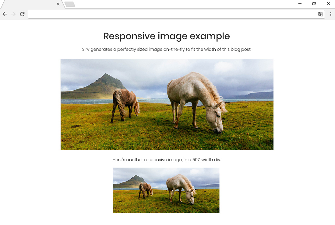 Embed perfectly sized images, scaled on-the-fly to suit each users screen.