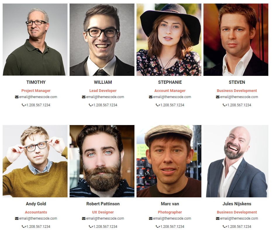 Team Members — WordPress Plugins