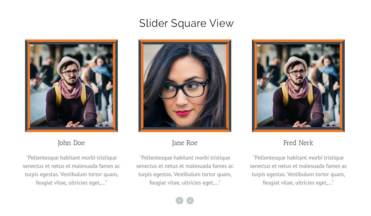 This is the screen shot of Slider layout. [team-slider]