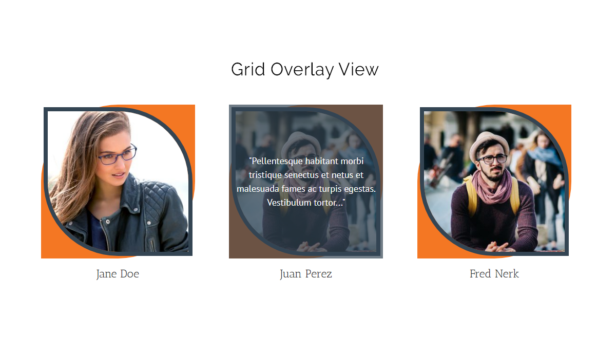 This is the third screen shot for Overlay Effect with Grid Layout.[team-grid-overlay]