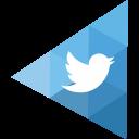 The Twitter Profile logo