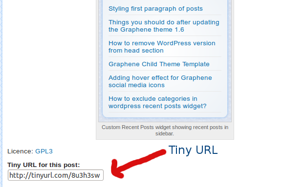 Plugin showing Tiny URL for a blog post