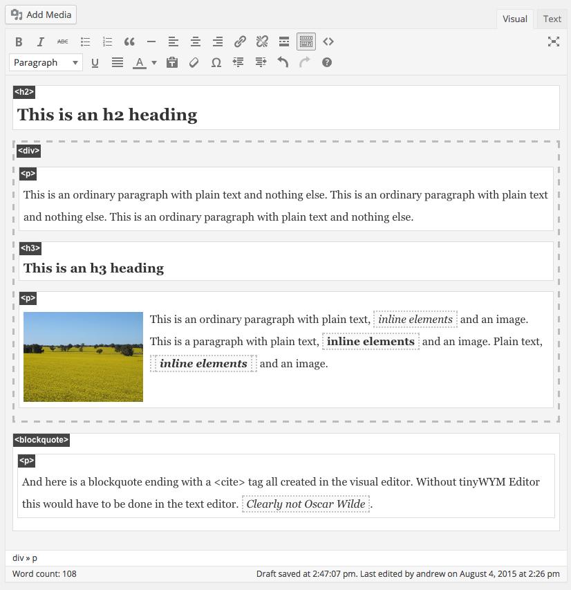 tinyWYM Editor converts WordPress's WYSIWYG editor into a WYSIWYM editor.