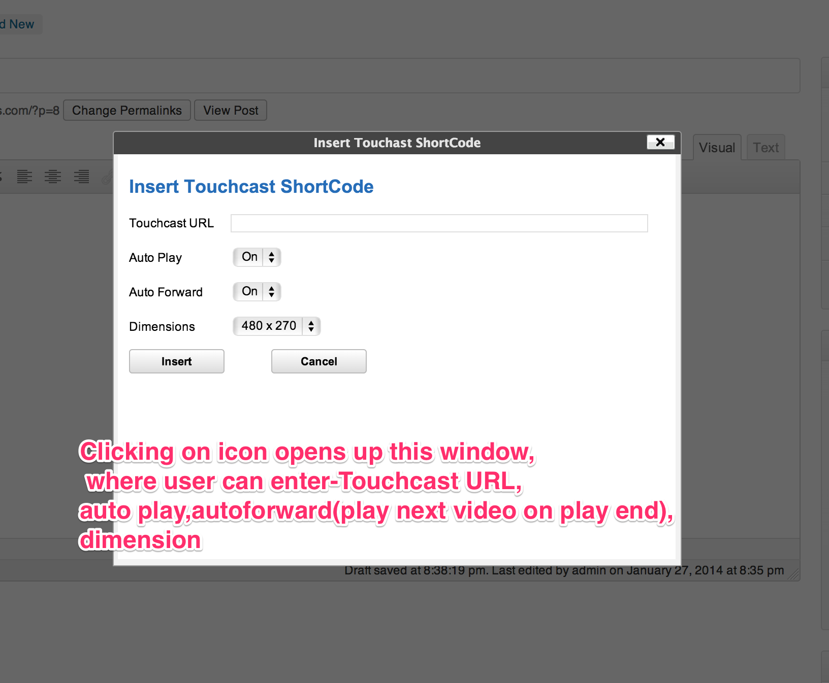 touchcast-embed screenshot 2