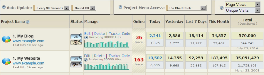 <p>Project Summary screen, enables viewing all website stats on a single page. These include visitors online, today, yesterday, last 7 days, this month and total. Sound notifications are available when new visitors come to site. The 30 day mini bar graph shows website page load activity over time.</p>