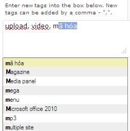 Back-end: The Tags editor for the post