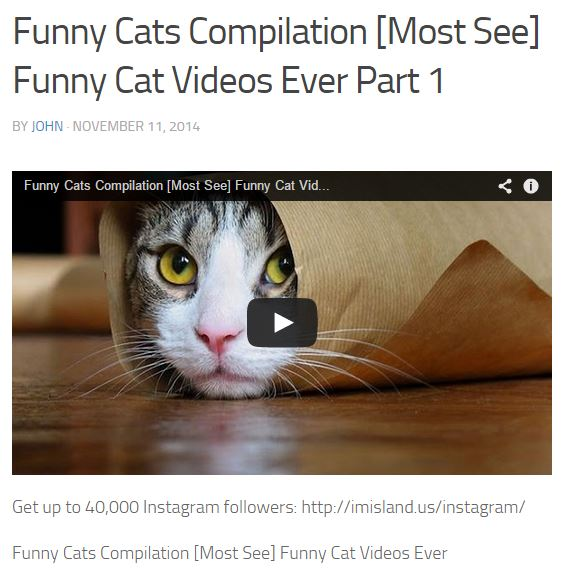<p>Post preview of 'funny cat videos' result.</p>