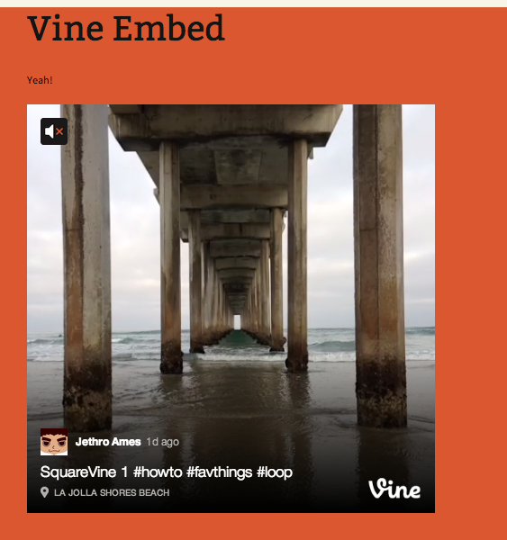 vine-embed screenshot 1