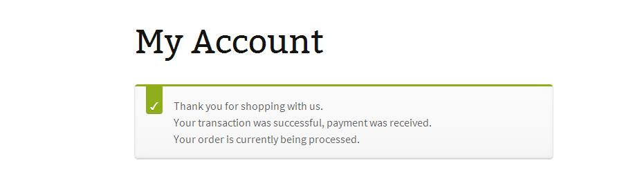 <p>Successful Payment Transaction Message</p>