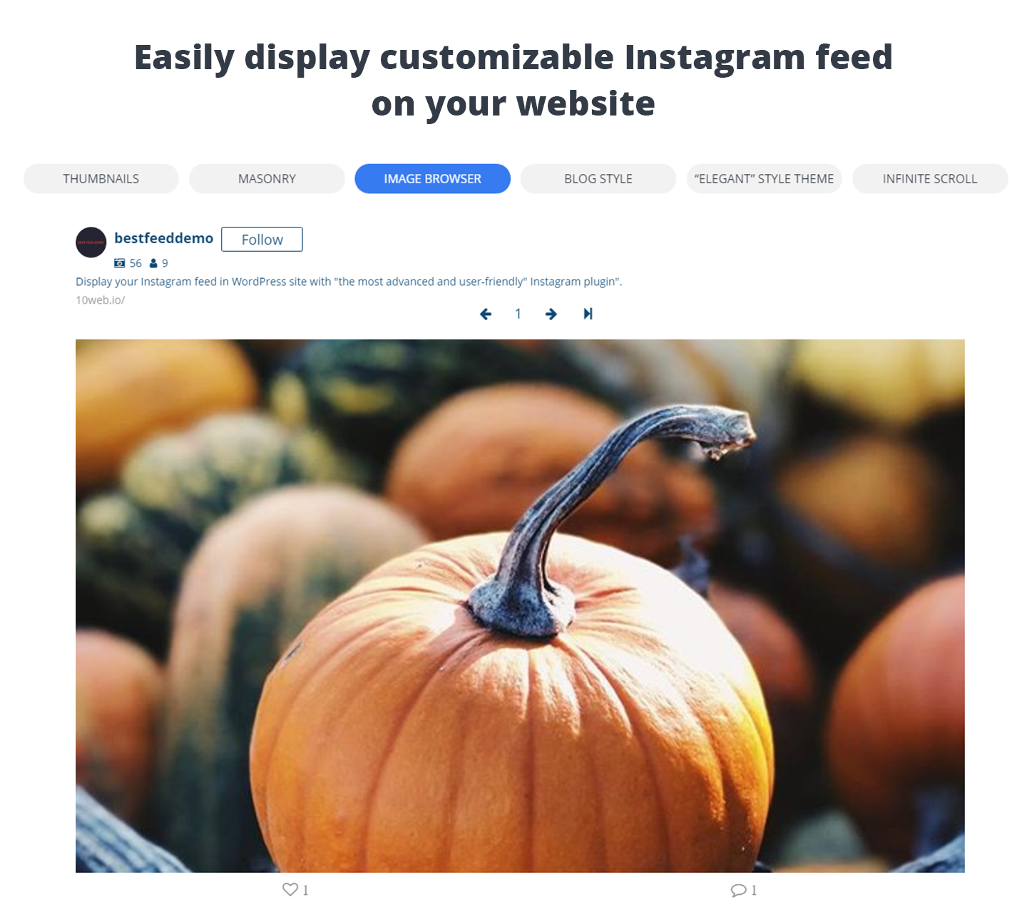 WordPress 10Web Social Photo Feed for Instagram - Lightbox