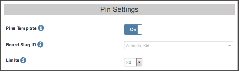 Pinterest Pins Settings