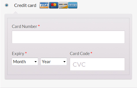 Frontend shop Checkout page Payment Form.