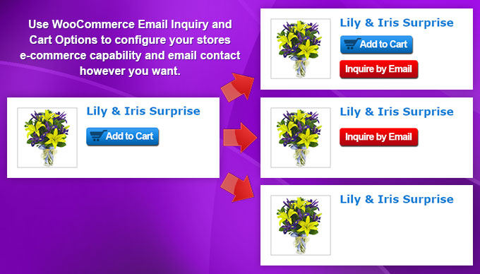 woocommerce-email-inquiry-cart-options screenshot 1