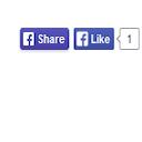 Social Ring (Facebook Like, Google +1, ReTweet, LinkedIn and Pin It) logo