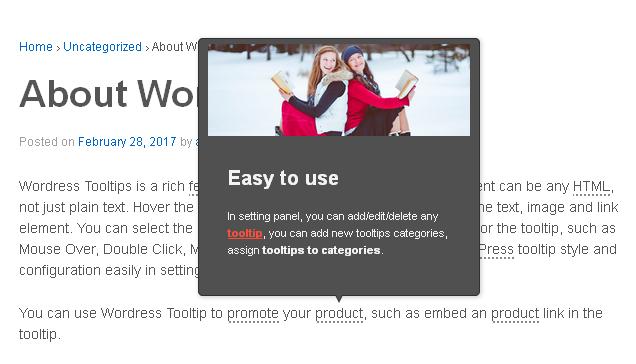 988775dd759 WordPress Tooltips – WordPress plugin