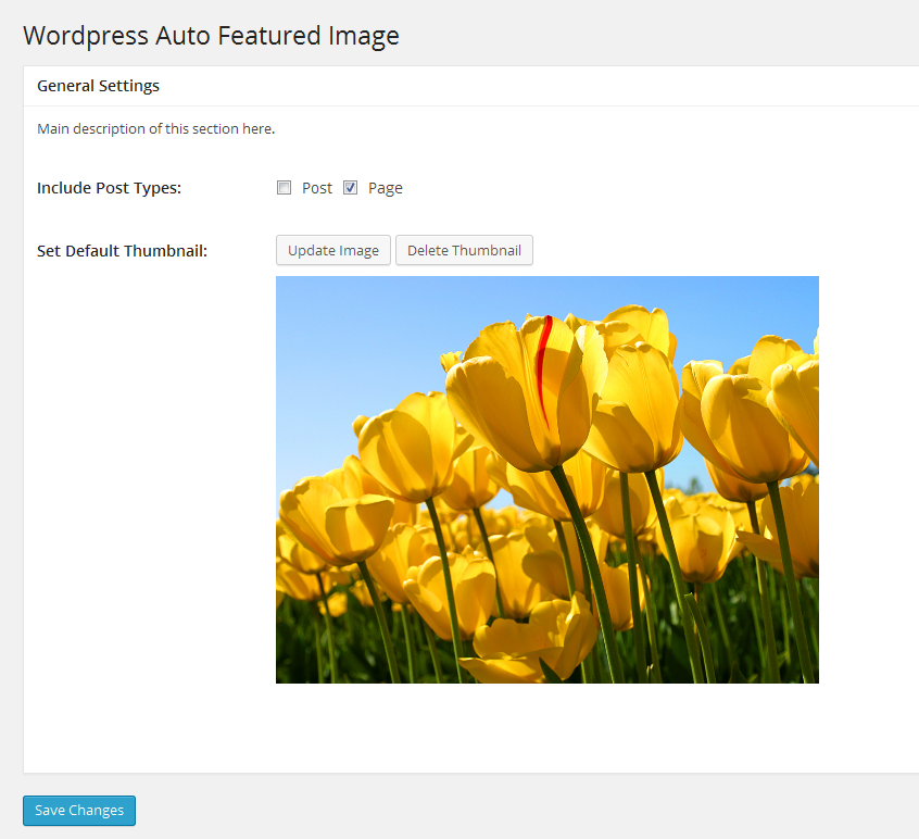 wp-auto-featured-image screenshot 2