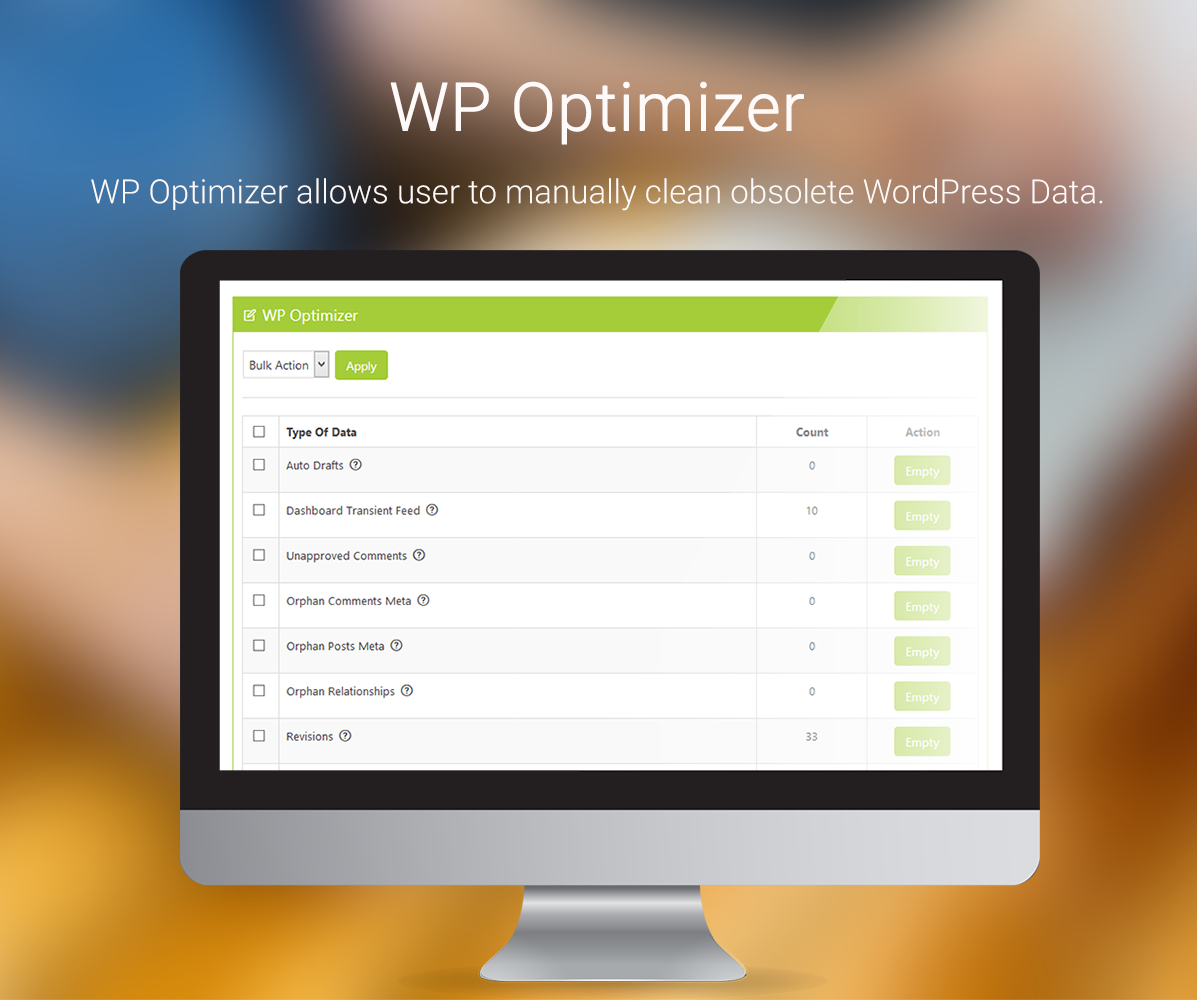 WP Optimizer Screen