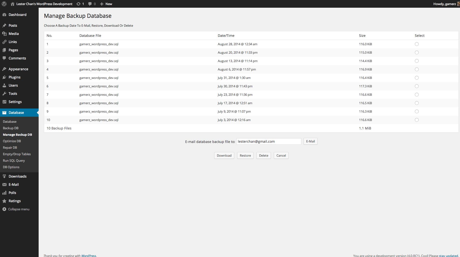 WP-DBManager's Screenshot: Admin - Manage DB