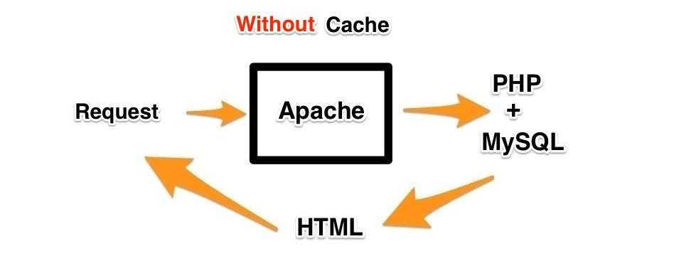 Without Cache
