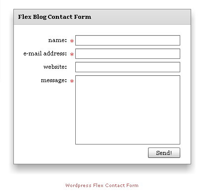 This shows the look of the Flex Contact Form