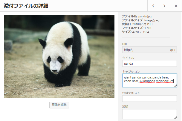 The result of image recognition is shown in the caption field in the attachment details.