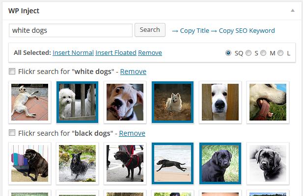 WordPress ImageInject eklentisi görsel arama ekranı