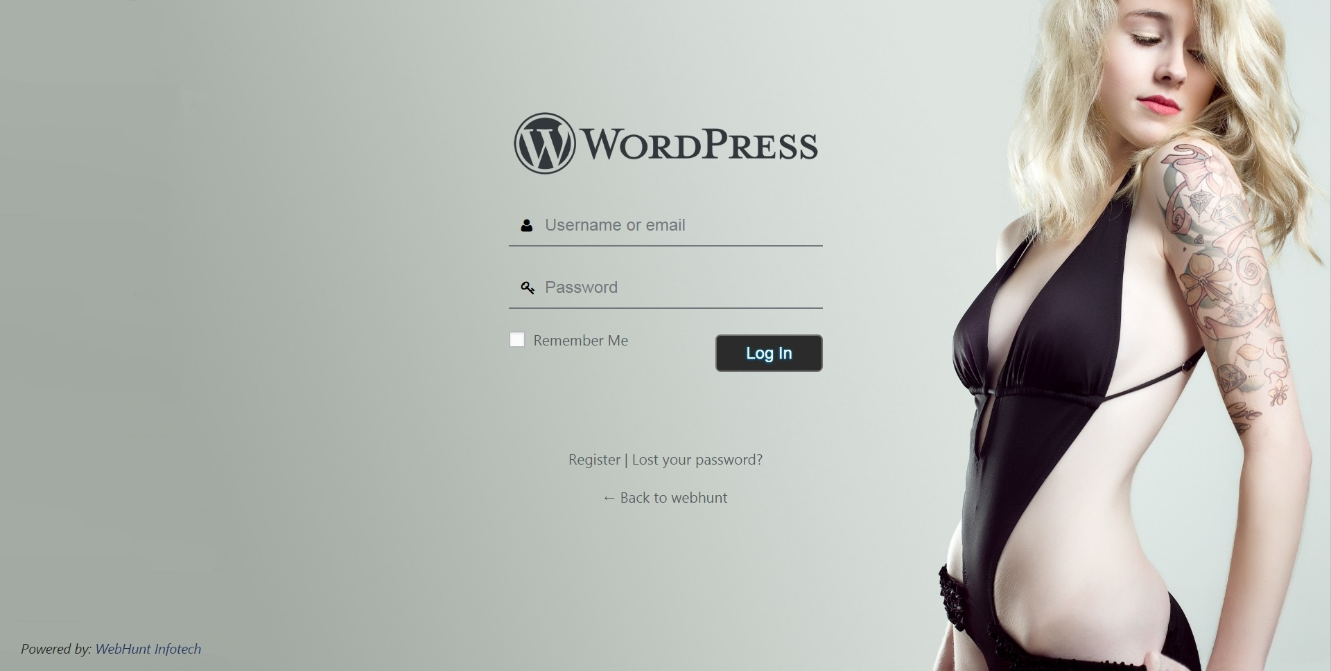 Login Page Customizer Preview 6