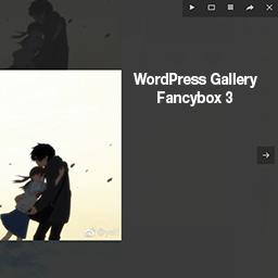 Wordpress FancyBox Plugin by Flying cursor