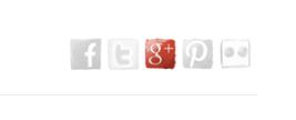 Vue des icônes sur votre page / View icons on your page