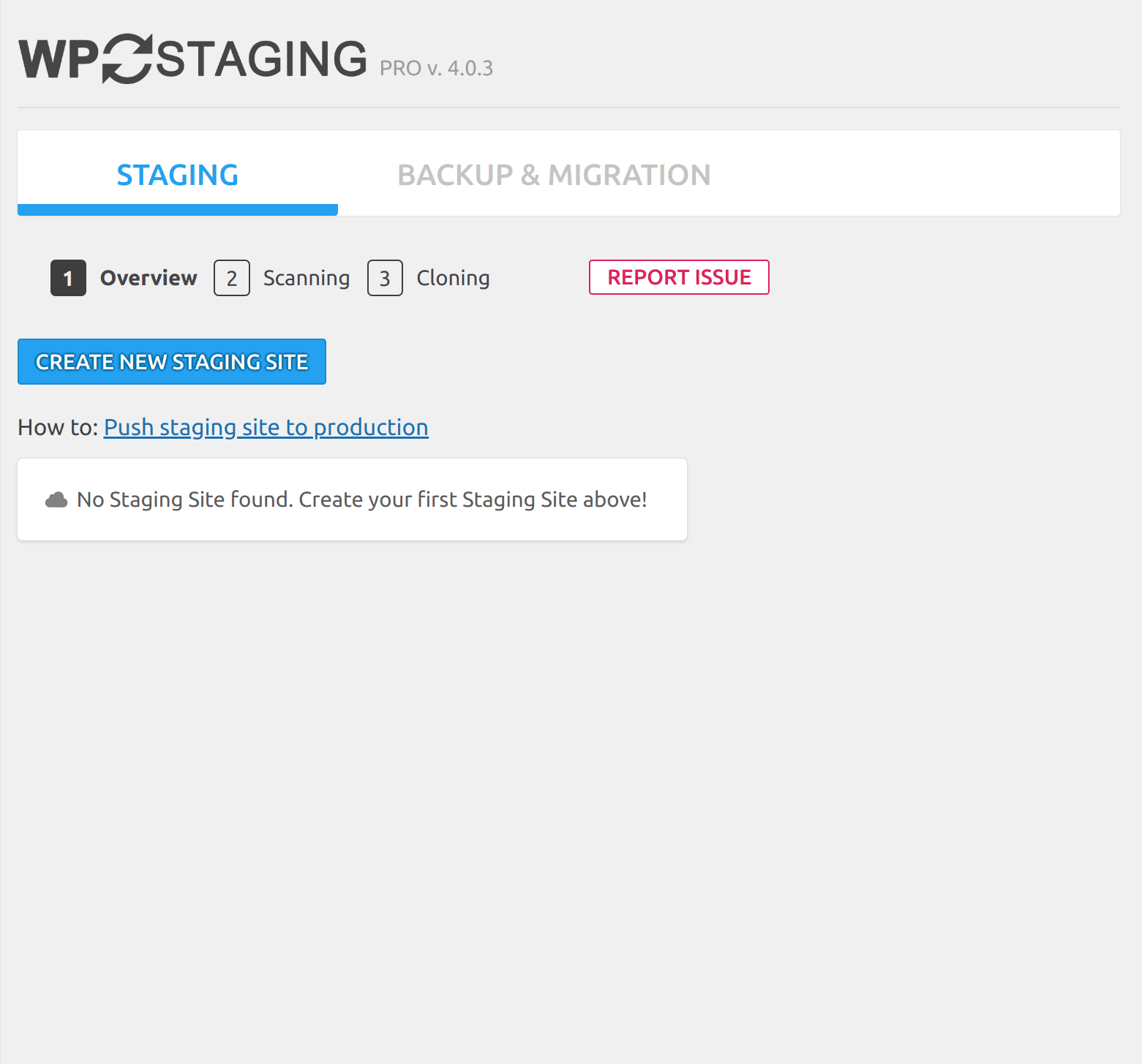 Step 1. Create new WordPress staging site