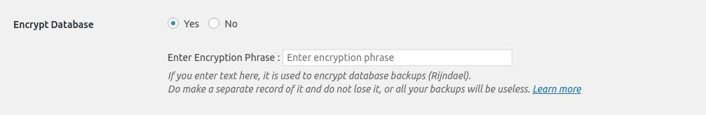 <strong>Database Encyption</strong> - Encrypt your Database backup to add an extra security layer.