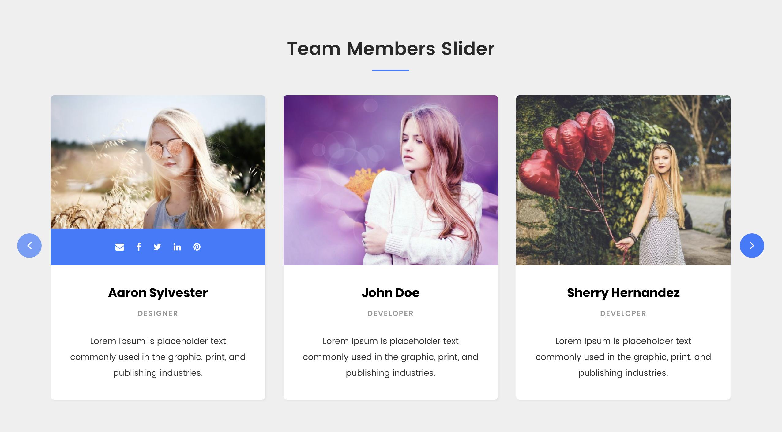 Team Members Slider.