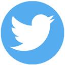 Twitter Follow Button logo