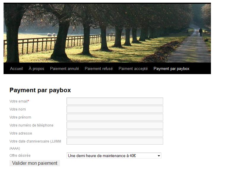 """Affichage du formulaire dans la partie """"frontend"""" de votre site"""