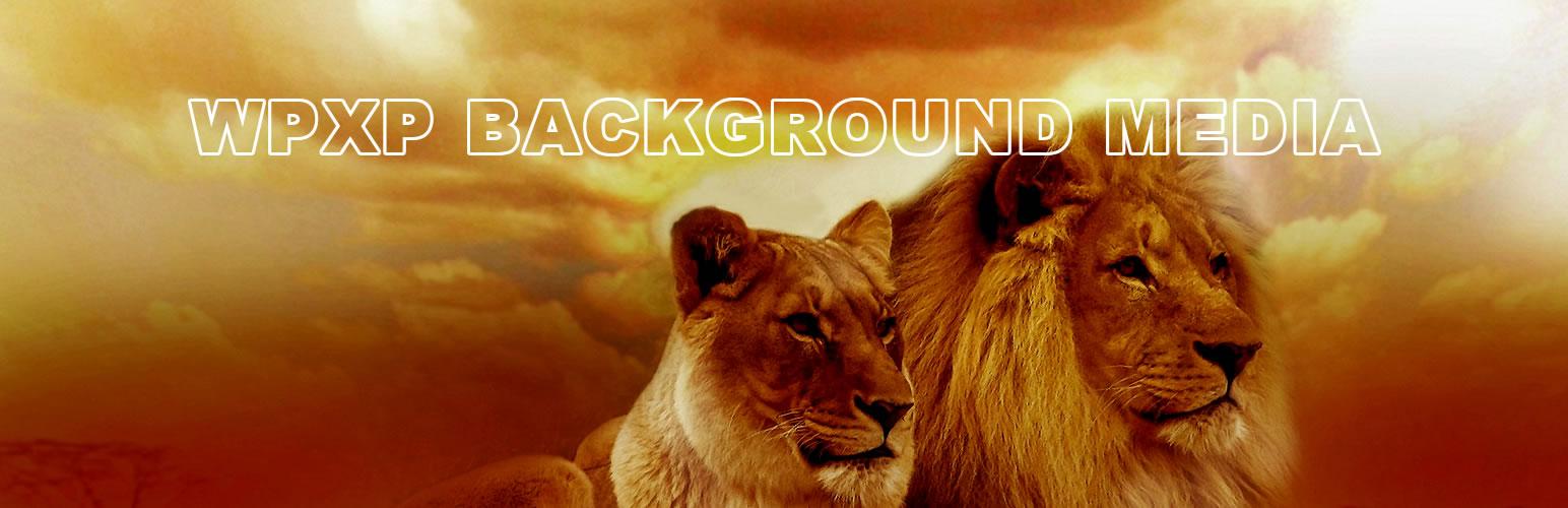 WPXP Background Media