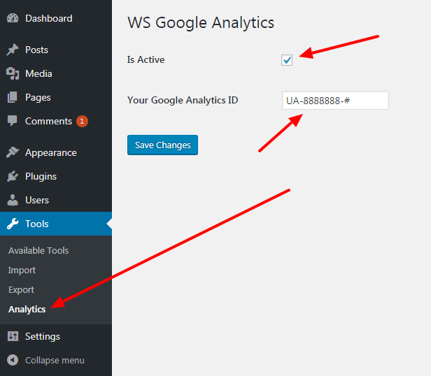 The 'WS Analytics' settings page.